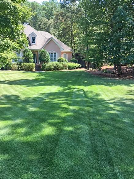High Quality Contact Us. Deep Green Lawn Care